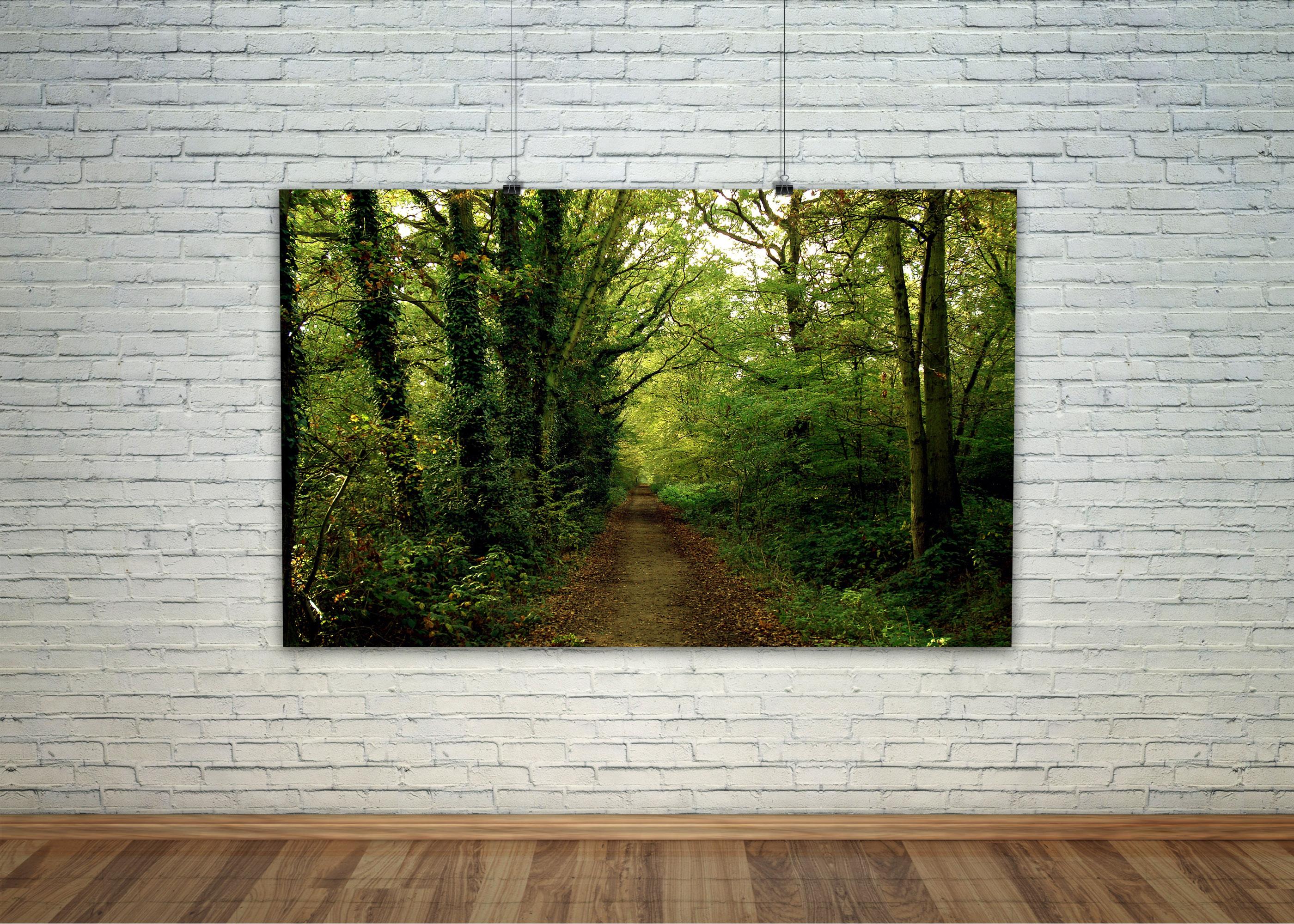постер лес природа зеоеный купить интернет-магазин