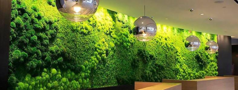 декорирование стен мохом и растениями декор бара декор кафе ресторана
